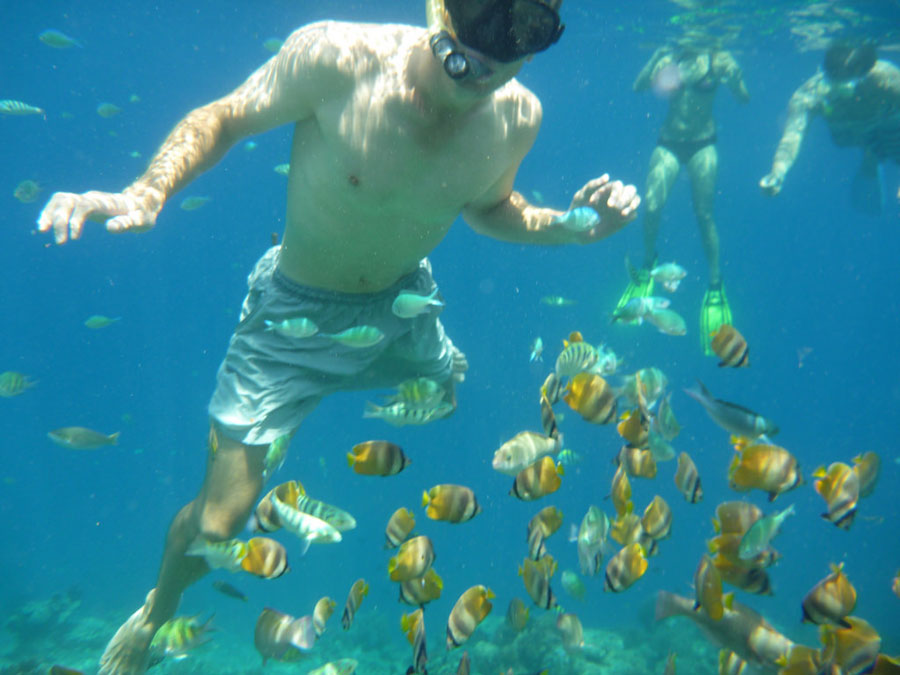 Tours snorkel to Gili Trawangan and surrounding areas